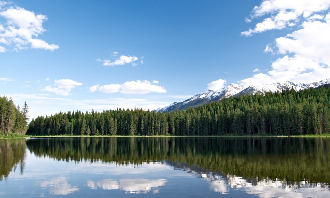 cedar lake reflection mountain forest golden bc
