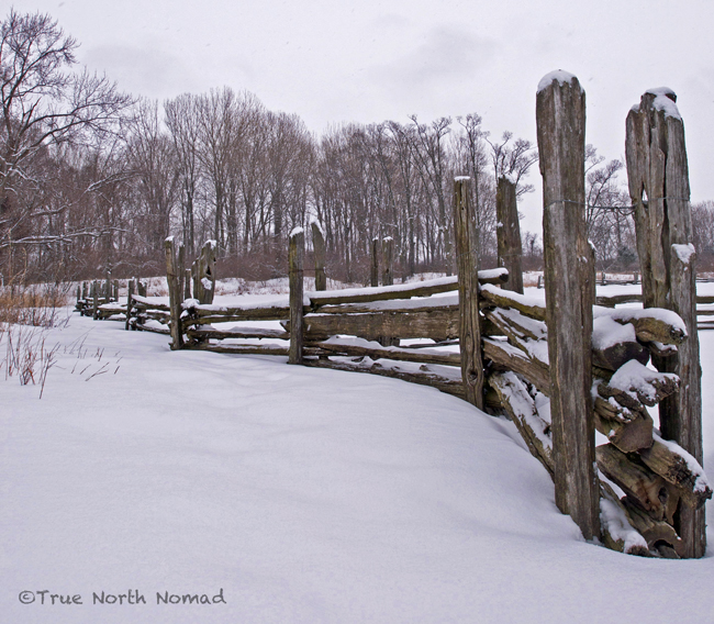 point pelee leamington ontario fence snow winter