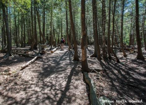 bruce peninsula national park trail