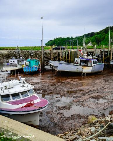 alma-low-tide-boats