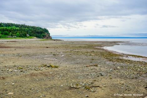 Alma-low-tide