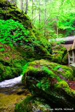 boulder-hiking-trail