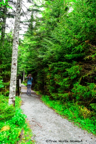 hiking-trail-2-fundy-national-park