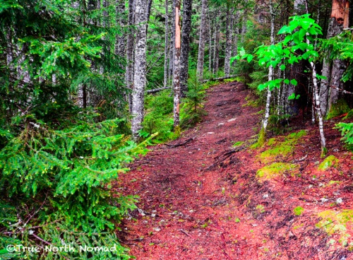 hiking-trail-fundy-national-park