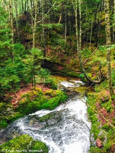 stream-fundy-national-park-4