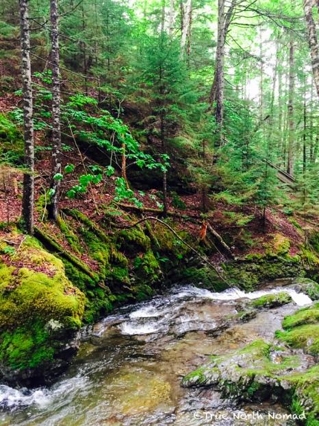 stream-fundy-national-park-5