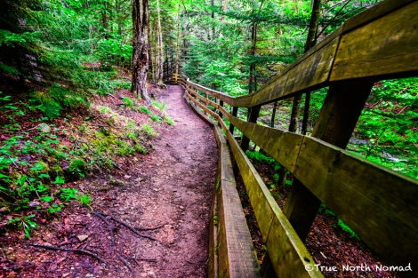 trail-fundy-national-park