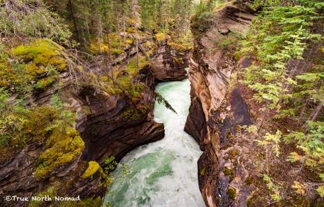 athabasca-waterfall-river