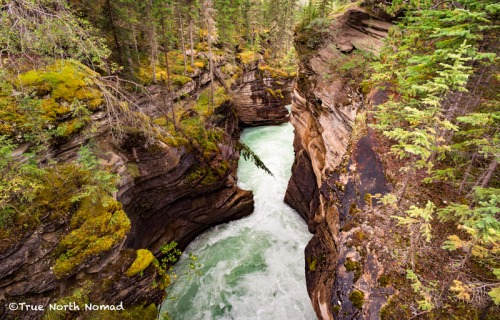 athabasca-waterfall-river