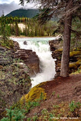 athabasca-waterfall