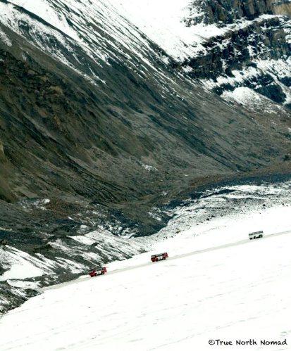 columbia-icefield-glacier-bus